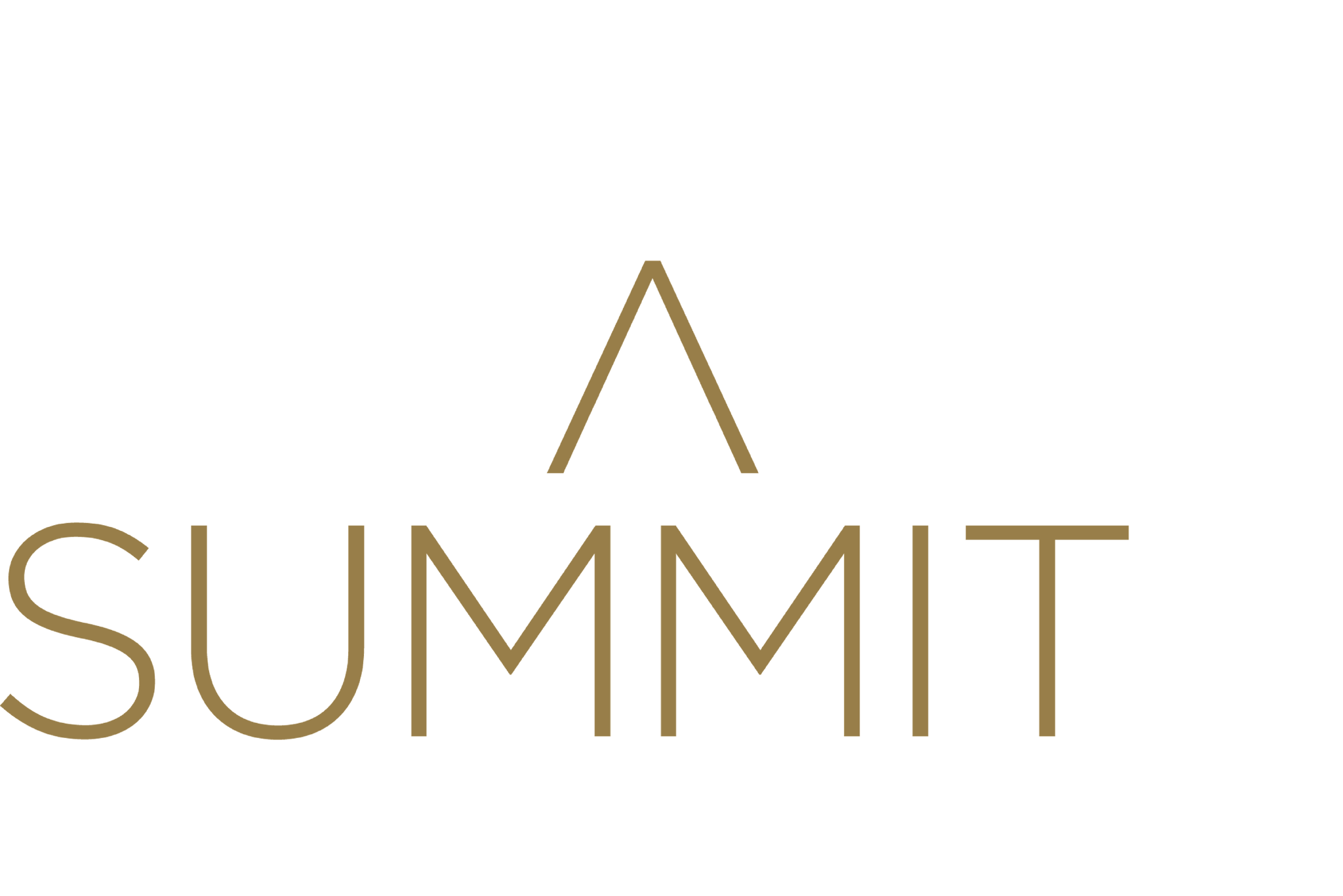The Retail Summit 2020