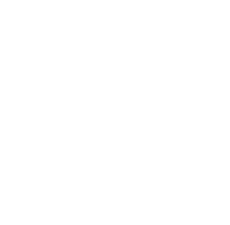 Your Dubai Experience